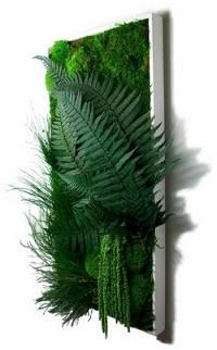 Miniature d'un tableau végétal
